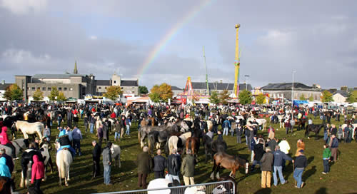 over the rainbow 2010